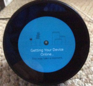 Picture of the Amazon Echo Spot speaker with Alexa, displaying its Getting Your Device Online screen.