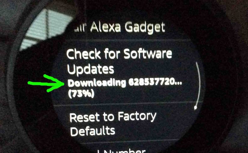 Updating Firmware Echo Spot Amazon Alexa Speaker Instructions