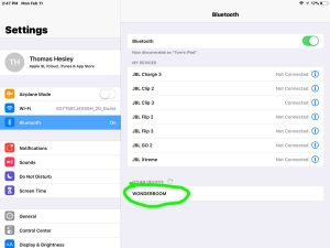 Screenshot of the iOS Bluetooth Settings page, showing the UE Wonderboom speaker as discovered But not paired, circled.