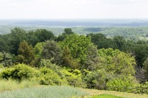 View from Monticello garden