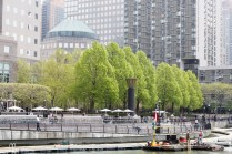 In Battery Park