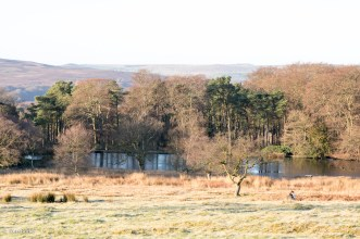 Longshaw_Jan2nd2017_0595