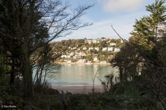 Across the estuary from Mill Bay