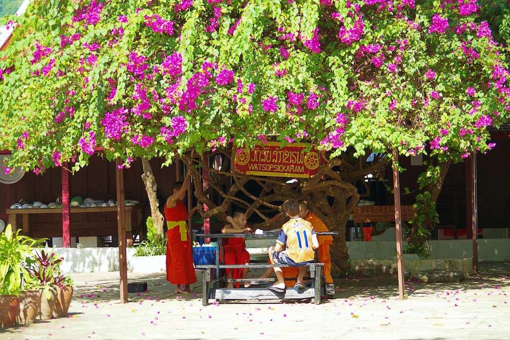 ルアンパバーンの僧侶