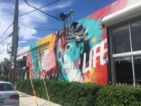 wynwood14
