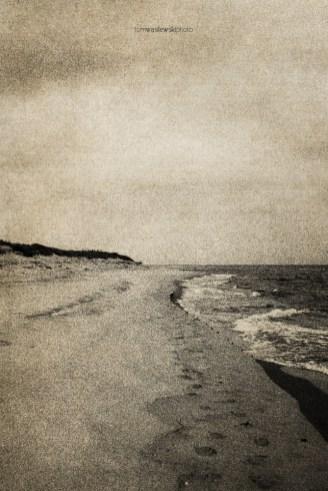 northern_wind_06