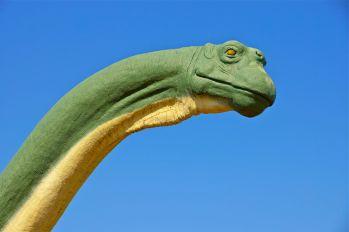 8-GlenRose - Dinosaur09
