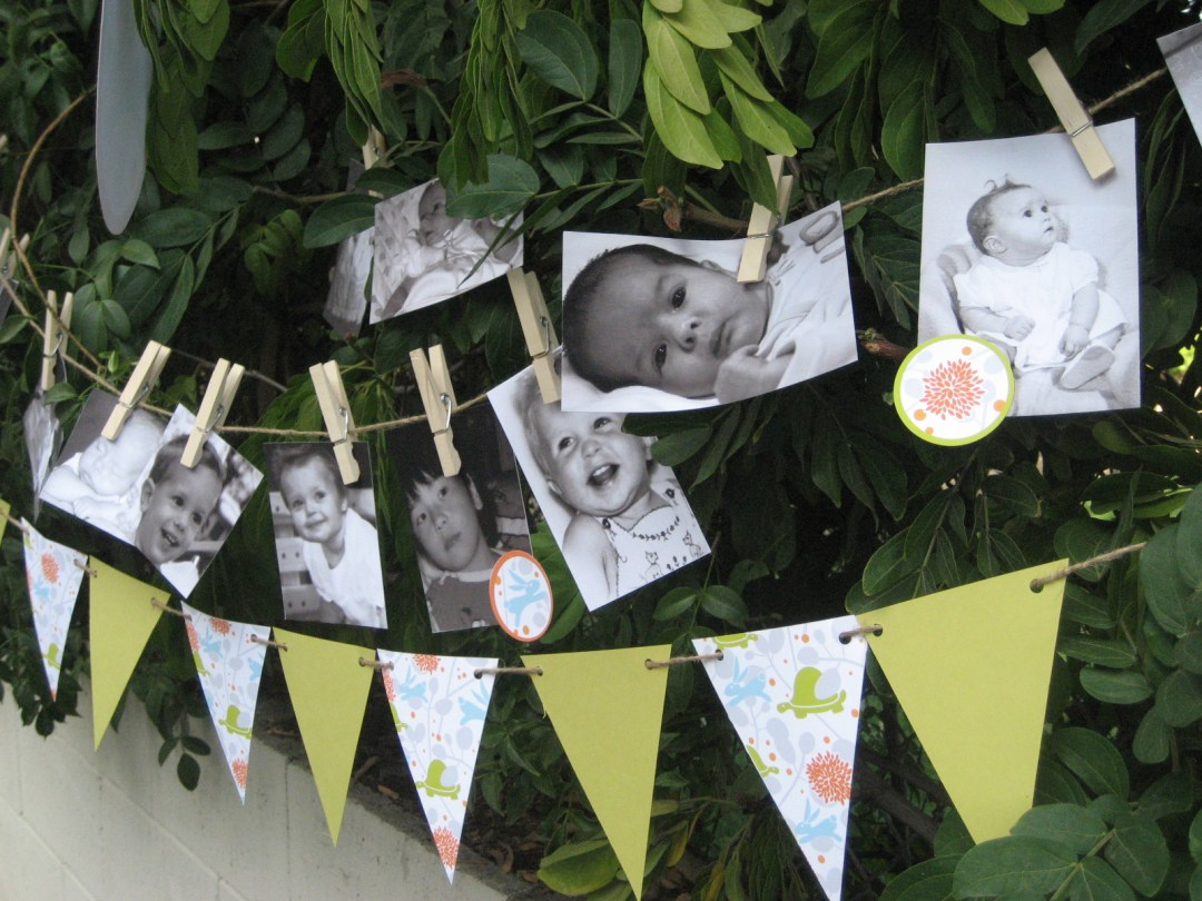 Baby Shower Game: Who's That Baby? — Tonality Designs