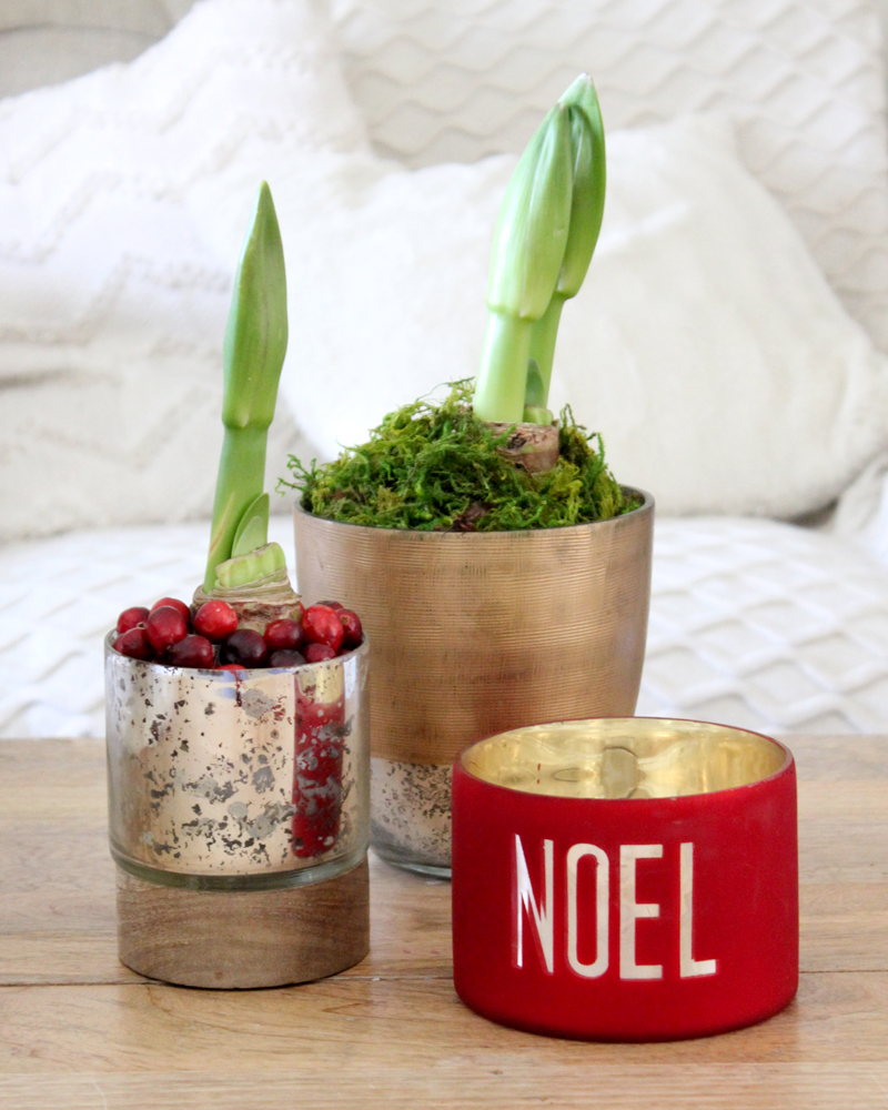 3 Ways to Use Cranberries in Your Christmas Decor