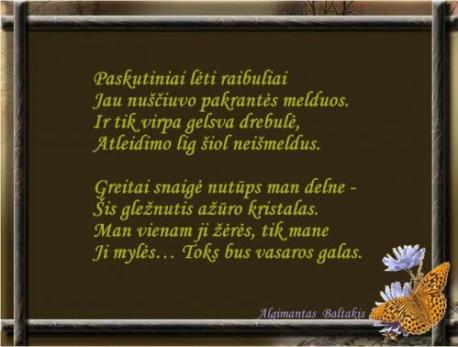 Baltakis2