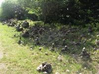 akmenys Orvydų Sodyboje Agnusyte2012