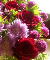 gėlių_abėcėlė