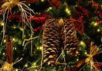 gražių švenčių
