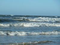 jūra rudneine Foto