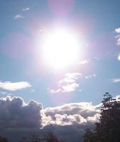 saulė Rudeninė 2011Foto