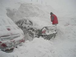 tikra_žiema