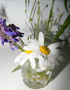 vaikų_parneštos_gėlės_Agnusyte_foto