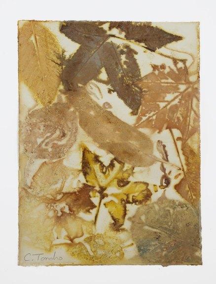 Cassandra Tondro Leaf Print Frameable Art Card