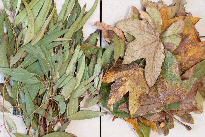 Cassandra Tondro artist leaf prints