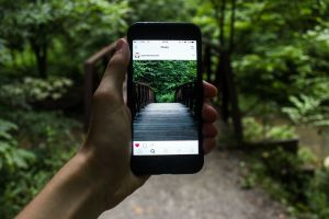 An arm holding a smartphone taking a picture of a bridge in the woods