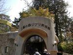 三鷹の森ジブリ美術館の感想(アクセス、駐車場、楽しみ方など)