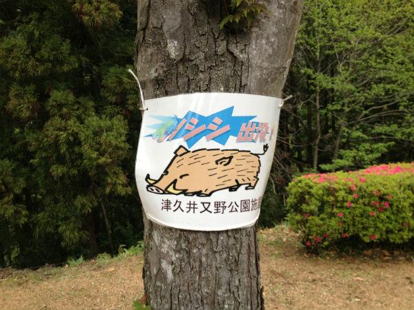 津久井又野公園 イノシシ出没の看板