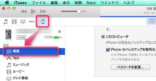 itunes iPhone 概要