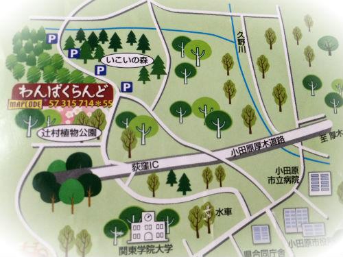 小田原こどもの森公園わんぱくらんど 地図