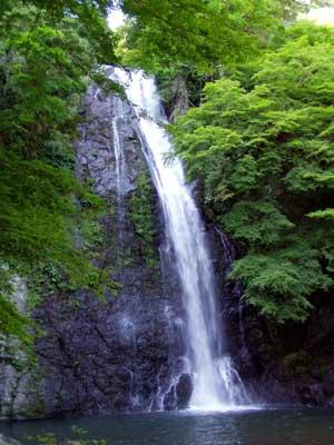 waterfall_of_minoh_summer2.jpg