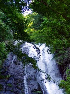 waterfall_of_minoh_summer3.jpg