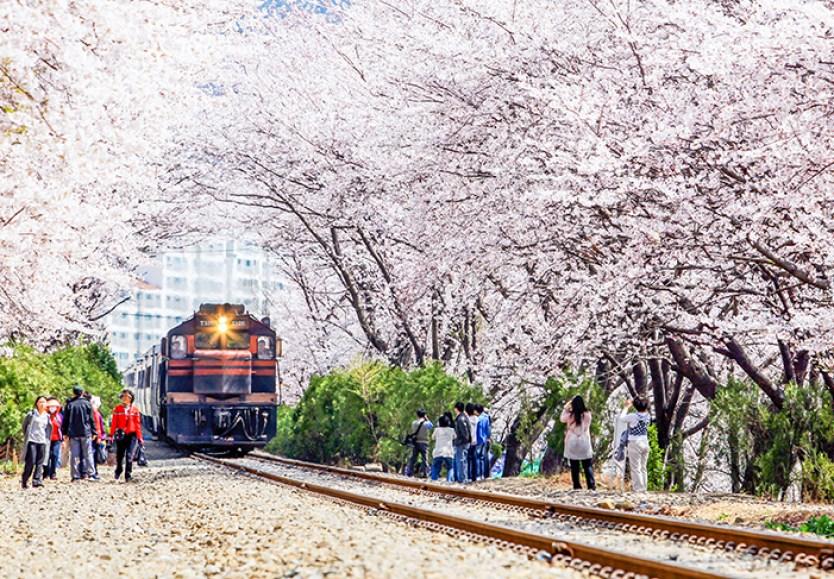 ©VisitKorea