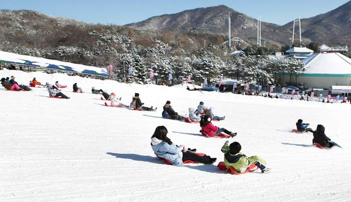 Image result for korean sleds