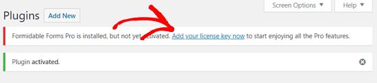Agregue su clave de licencia Formidable Forms Pro