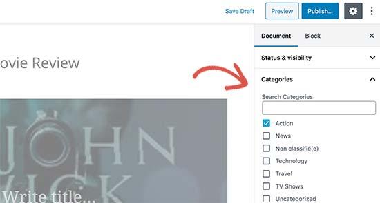Categoría agregada a un tipo de publicación personalizada