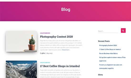 Vista previa de la página del blog