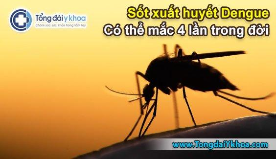 sot xuat huyet dengue mac may lan trong doi