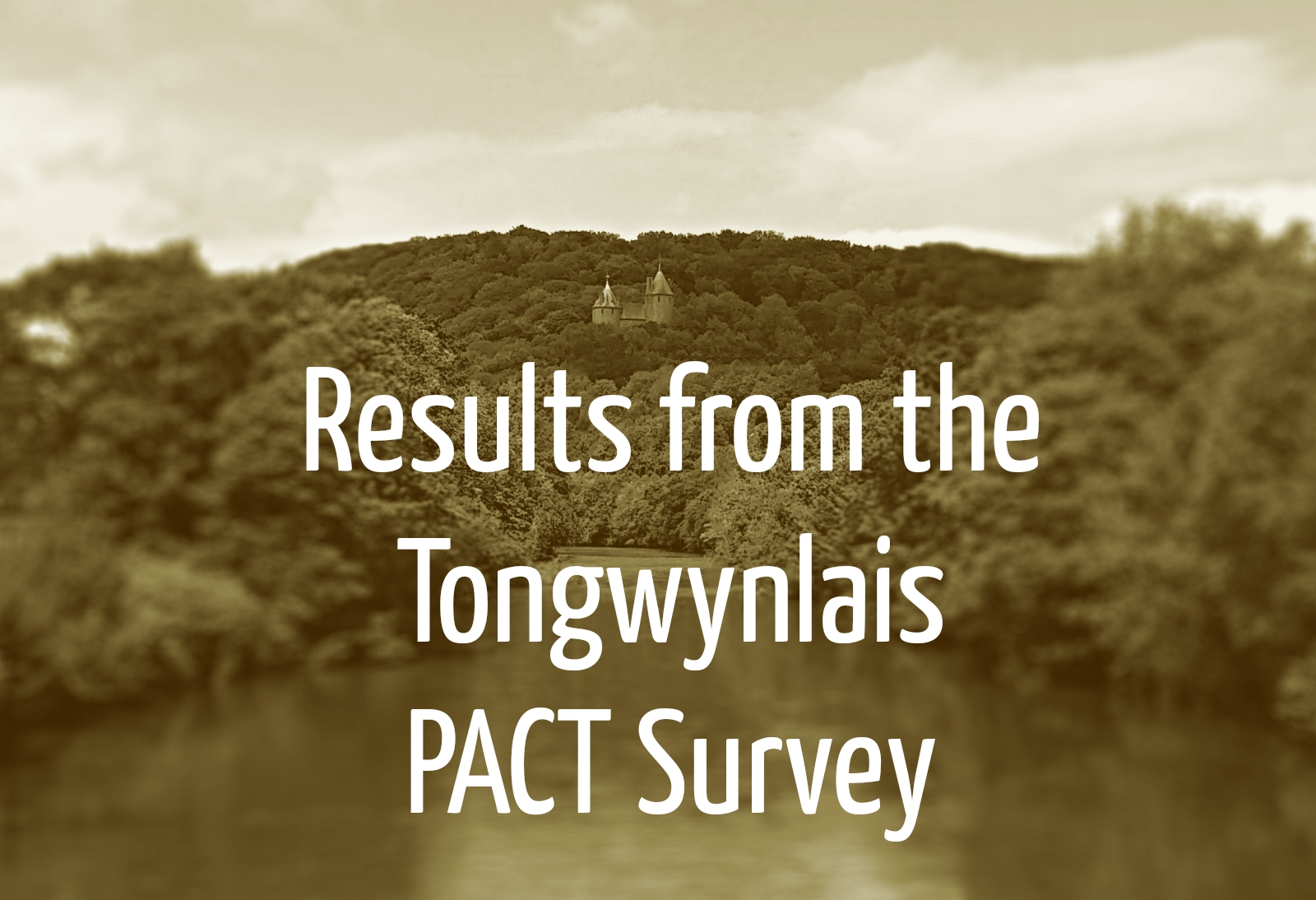 Tongwynlais PACT Survey header