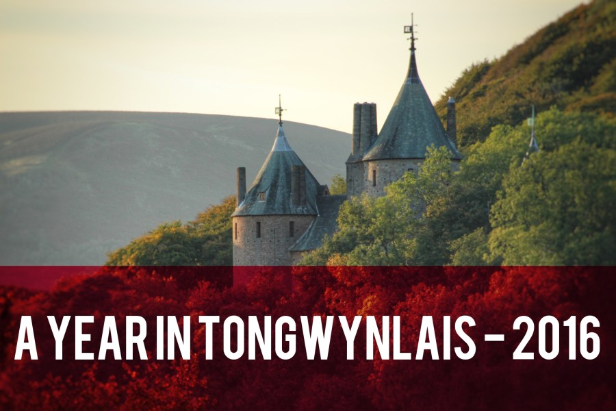 A Year in Tongwynlais 2016 header