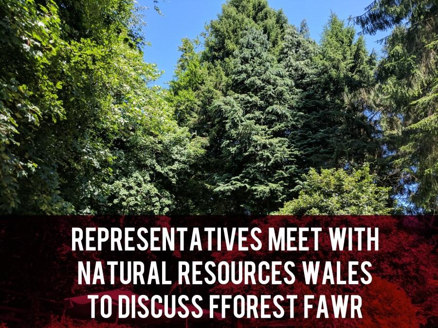 Fforest Fawr meetings header
