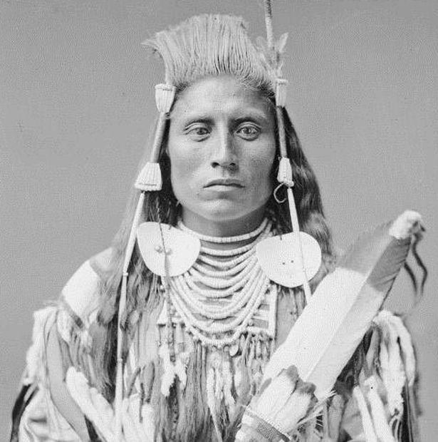Chief Medicine Crow, 1880