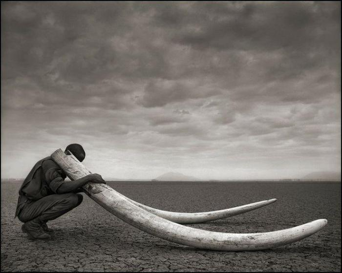 Nick_Brandt_ranger_with_tusks