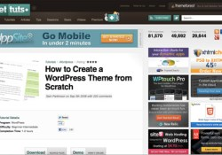 View the WordPress theme tutorial