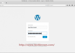 5 WordPress Login