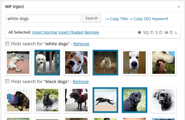 Search for stock photos