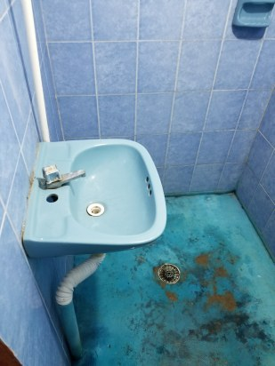 The sink and shower