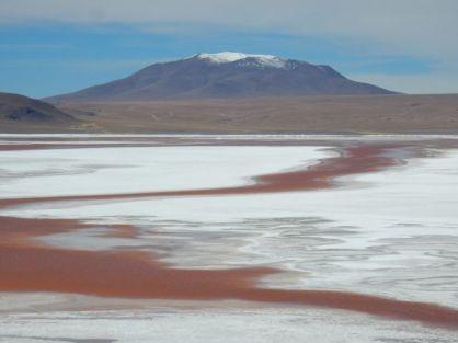 Laguna mit Flamingos