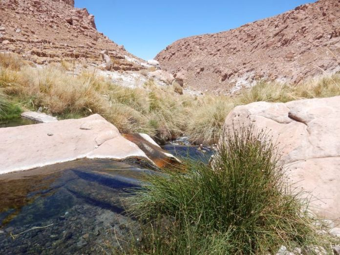Termas auf 3.400 Meter in Puritama. 38 Grad klarstes Wasser