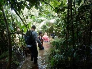 Zum Warmlaufen ... von Iquitos 70 km tiefer in den Dschungel des Amazonas.