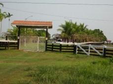 """Rinderfarmen entlang der """"Extrema"""" - der Transozeanica an der Grenze zu Bolivien"""