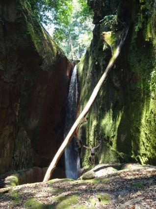 Der nördliche Teil des Amboro Parks ist für die Wasserfälle berühmt.
